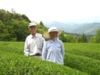 倉谷さんのお茶