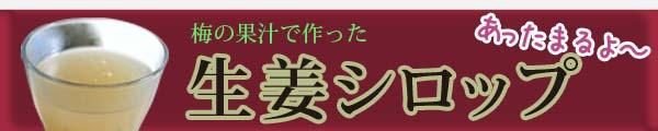 梅の果汁で作った生姜シロップ